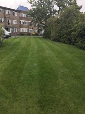 Rams Grounds Maintenance Gardening (2)