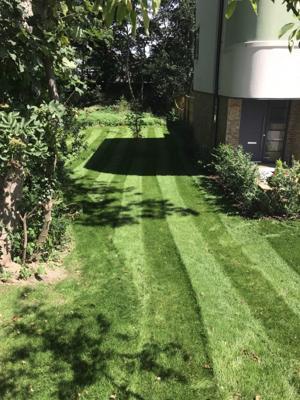 Rams Grounds Maintenance Gardening (3)