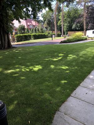 Rams Grounds Maintenance Gardening _4434 (4)-300x400