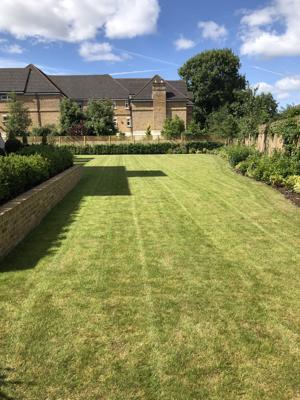 Rams Grounds Maintenance Gardening _4435 (5)-300x400
