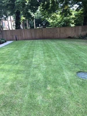 Rams Grounds Maintenance Gardening _4436 (6)-300x400