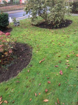 Rams Grounds Maintenance Gardening3 (10)