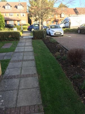 Rams Grounds Maintenance Gardening3 (5)