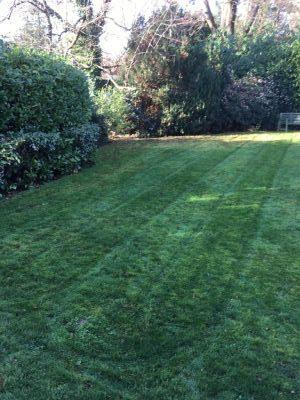 Rams Grounds Maintenance Gardening3 (8)